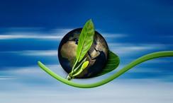 Betrieblicher Umweltschutz_Umweltmanagem