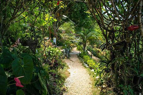 Ahhh..Ras Natango Gallery and Garden