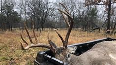 Oklahoma Rut Report