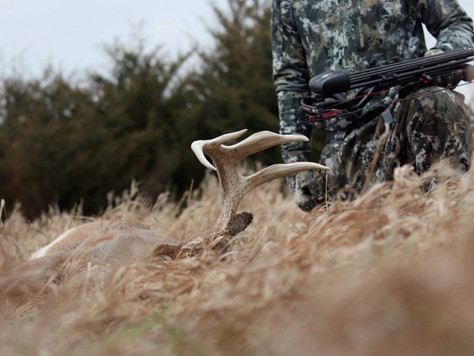 The Best Day of the Whitetail Rut