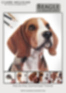 beagle front cover.jpg