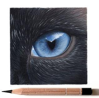 cat eye pencil.jpg