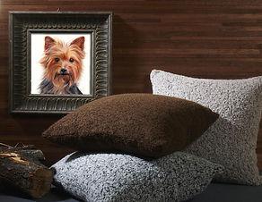 Pet Portrait Artist