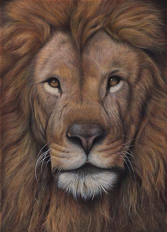 lion to adj.jpg