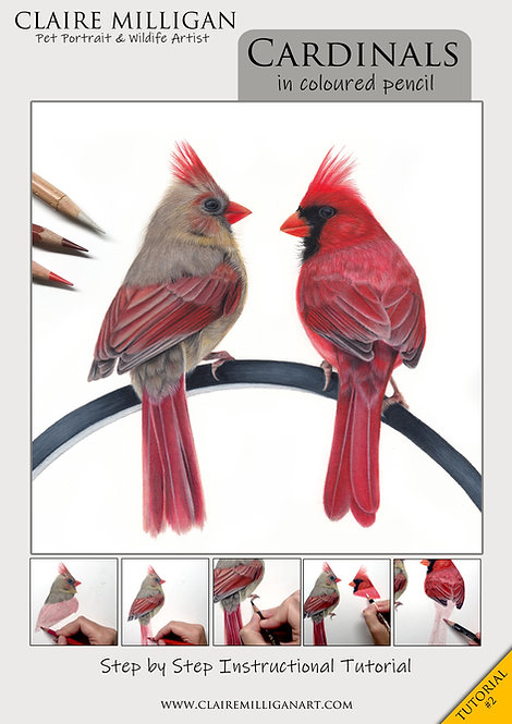 Cardinals Tutorial (#2)