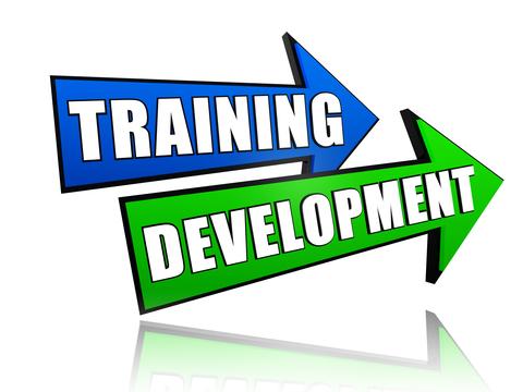 training-development - Copy