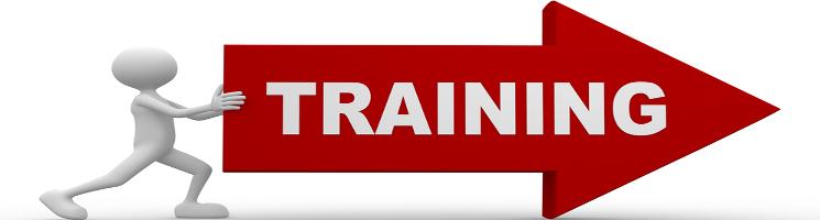 training-direction - Copy