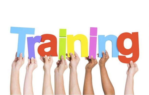 training73664 - Copy