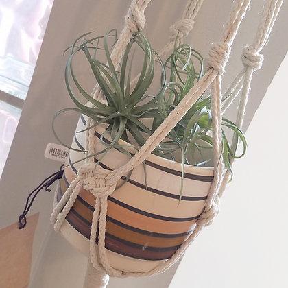 Forget Me Knots Large Macrame Plant Hanger