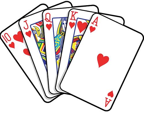 Individual Euchre Player