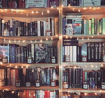 bookshelf, book blogger, cats and books, bookstagram