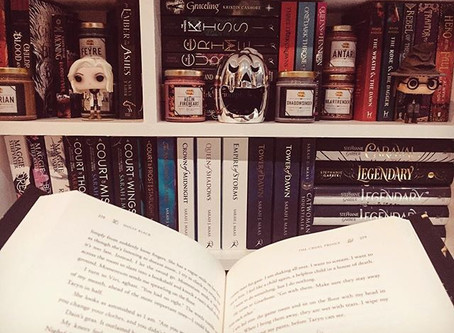 Books I'm Currently Reading   November 2018