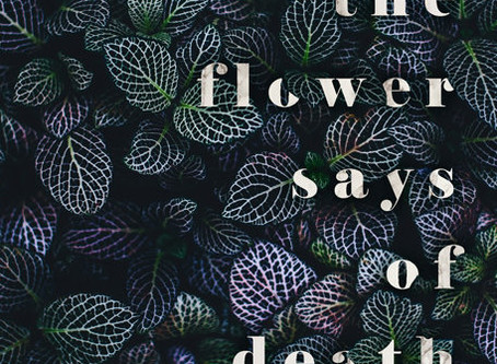 Blog Tour || What The Flower Says of Death by Danielle Koste | Review + Giveaway