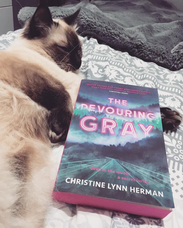 Review | The Devouring Gray by Christine Lynn Herman