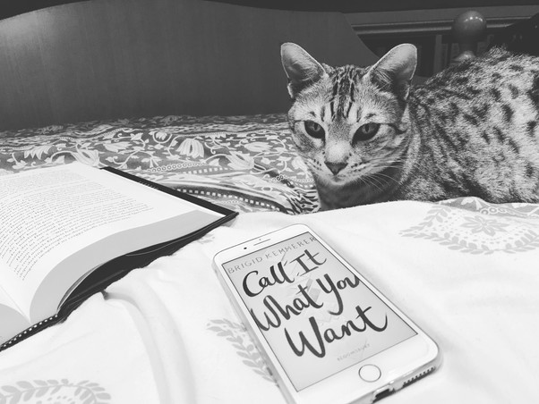 Call It What You Want by Brigid Kemmerer | Review