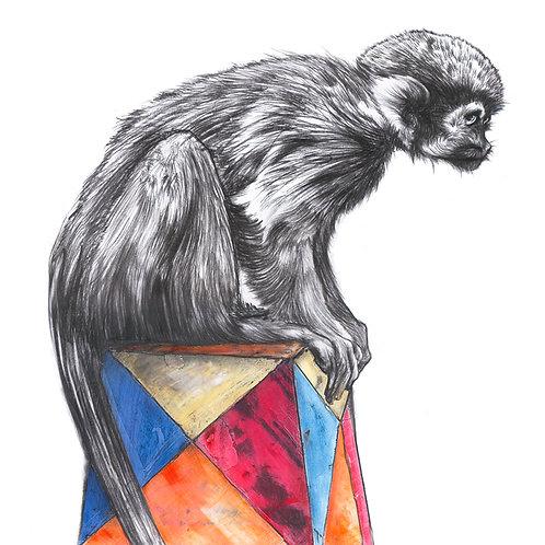 Circus Monkey Giclee Print