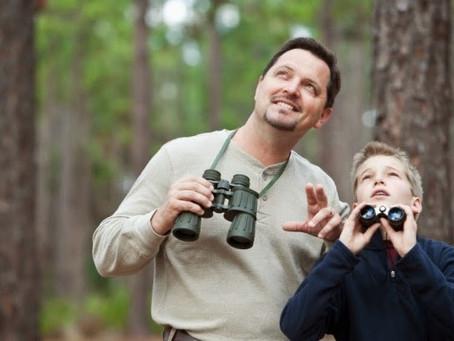 Як зацікавити дітей життям птахів?