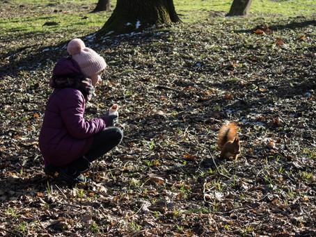 Зимовий фотоквест: підсумки від Зайця