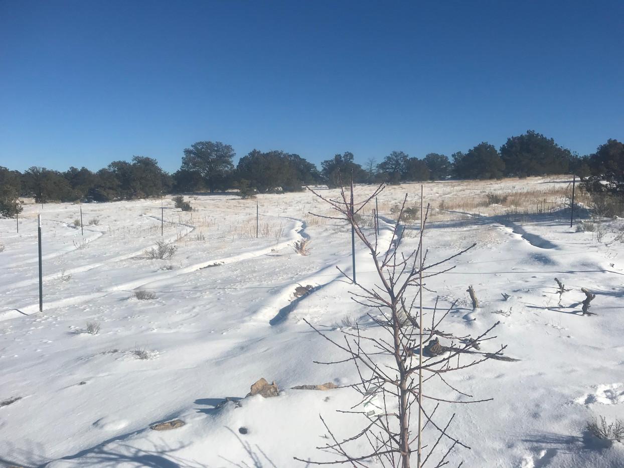 Snow on contour lines