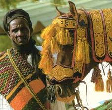 The ceremonial harnesses on the horses are lavishly decorated with metallic tinsel, colourful embroidery, and leather applique.