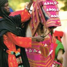 A cavalier prepares his horse's livery