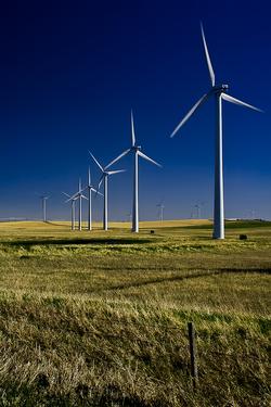 12x18 windmills.png