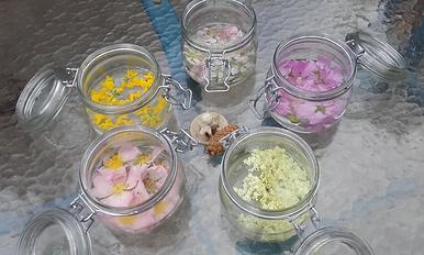 soutien-émotionnel-fleurs-de-bach-49-cholet-roussay