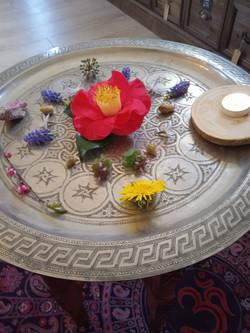 soins-énergétiques-fleurs-de-bach-maine-et-loire-soin-rituel