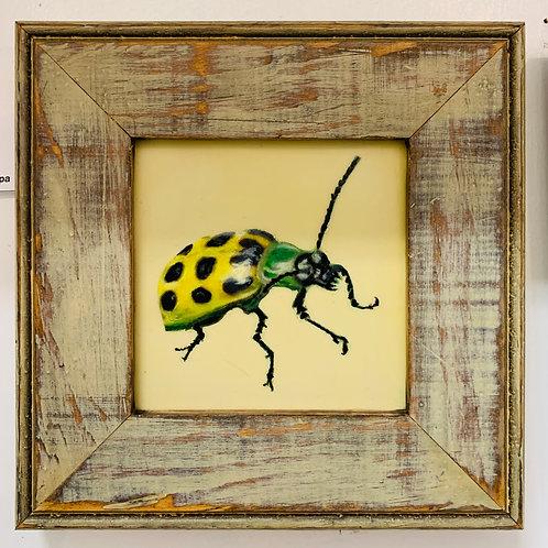 Cucumber Beetle Encaustic Painting