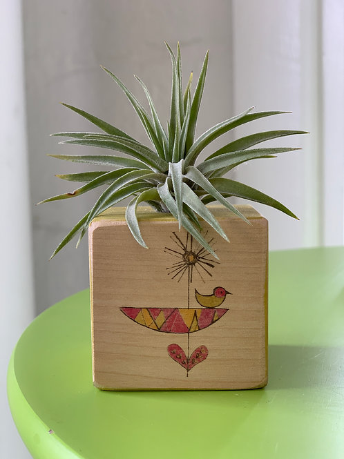 Air Plant in Hand Painted Wooden Block with Heart and Bird