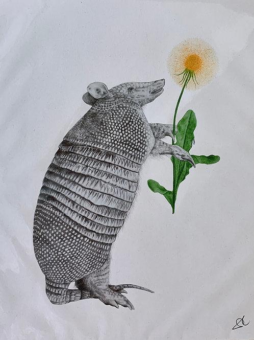 Animal Original Art Prints
