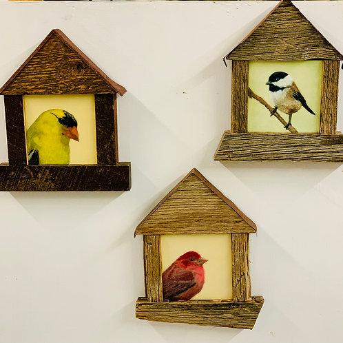 Bird Encaustic Paintings