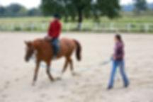 Formation de cheval