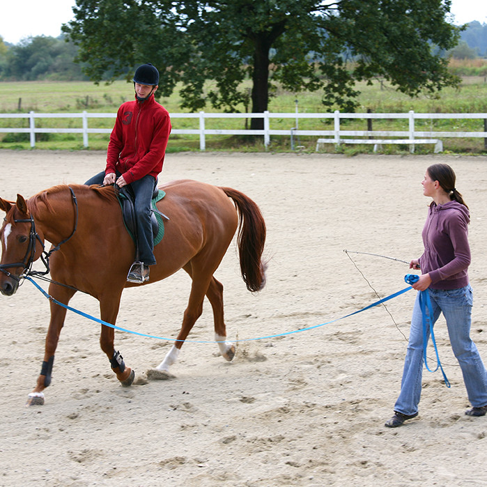 Therapeutic Riding Instructor Course