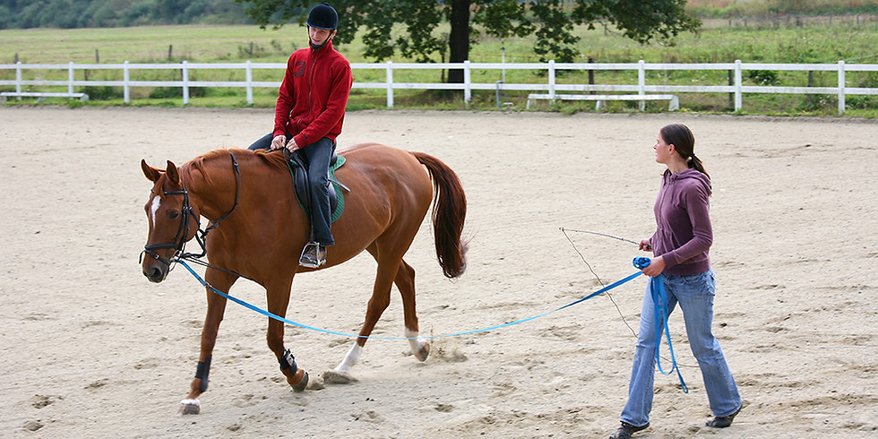 Therapeutic Riding Instructor Course (1)