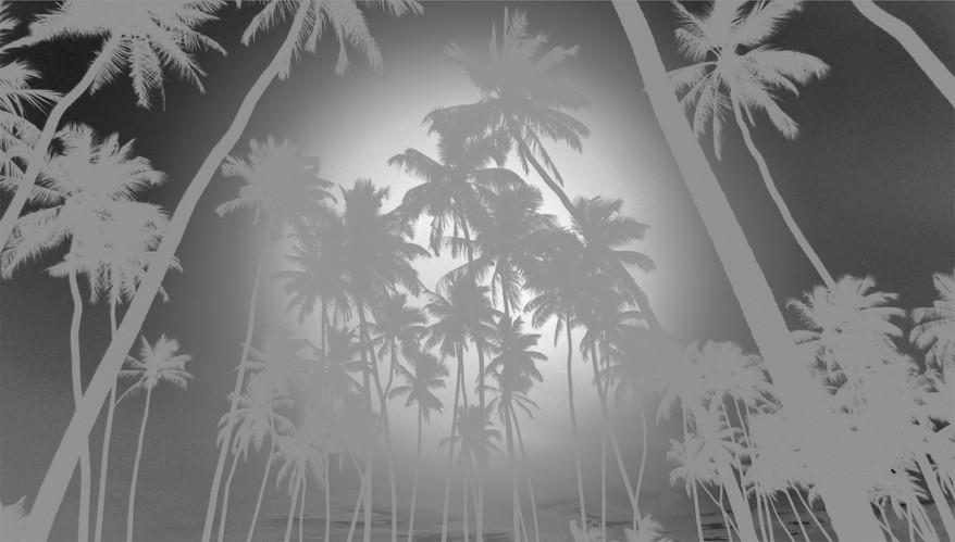 Projekt uppslag silver palmer 2048.jpg