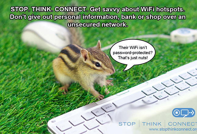 STC_Meme_Squirrel.jpg