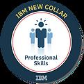 New+Collar+Professional+Skills+v5+600+x+