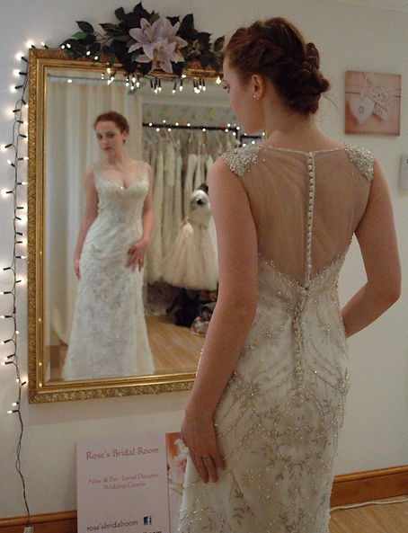 Sparkle fitted wedding dress