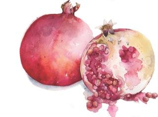 Pomegranate_img002