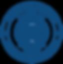 DLSA emblem transparent-1.png