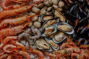 Seafood%20Shrims%20and%20Clams_edited.jp