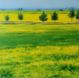 Cotswold Field - 12 x 12 Acrylic on Canvas - $250