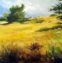 Sunlit Landscape - 20 x 20 Acrylic On Canvas - $300