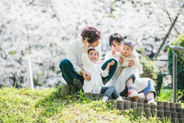 ロケーション出張撮影-桜