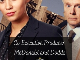From Producer to Co-Executive Producer