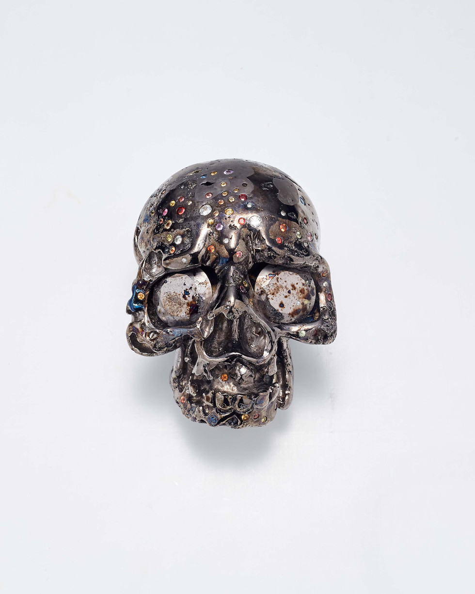 Matthew Campbell Laurenza: Jeweled Skull