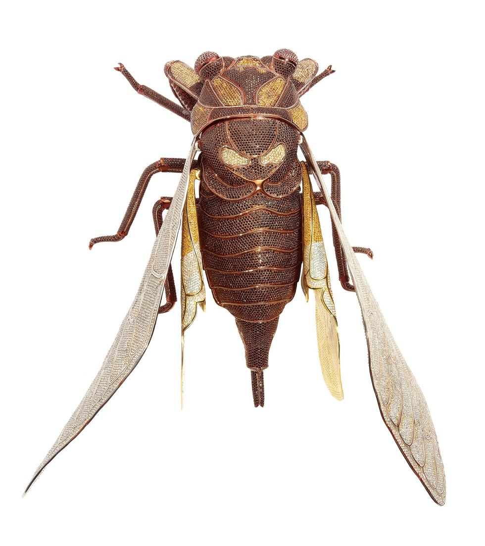 Matthew Campbell Laurenza: Cicada