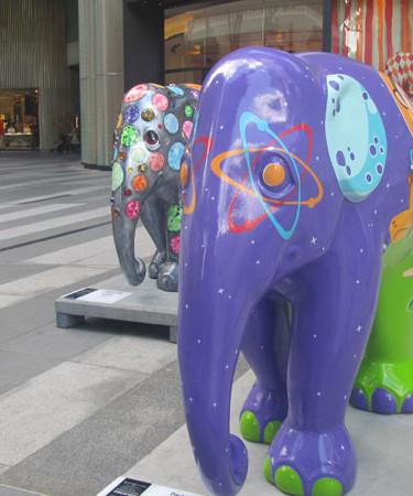 Matthew Cambell Laurenza: Elephant Parade