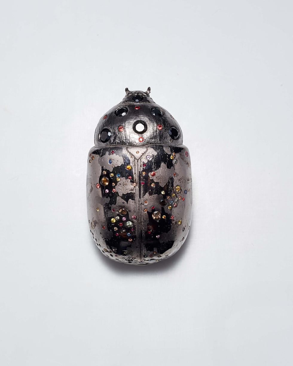 Matthew Campbell Laurenza: Jeweled Bug